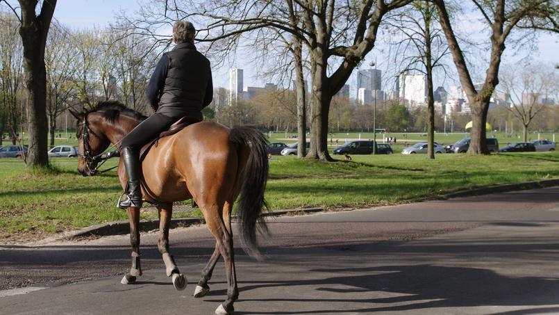 Au Bois De Boulogne Paris Demande  Ltat De Crer Un Centre Pour