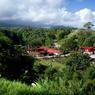 C'est au fond d'une petite vallée sur l'île de la Martinique que le Rhum J.M est né.