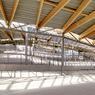 Les toits laissent entrer la lumière dans l'intégralité du complexe.