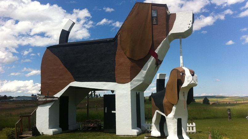 The Dog House Creche