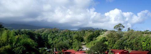 En Martinique, une rhumerie rénovée à déguster sans modération