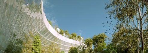 Mille arbres à Paris, projet emblématique de la capitale de demain