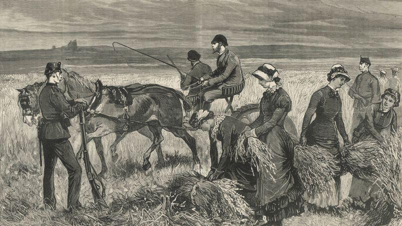 Charles Boycott (au centre) est réduit à faire travailler ses proches sous protection militaire pour effectuer les moissons car les paysans l'ont «boycotté».