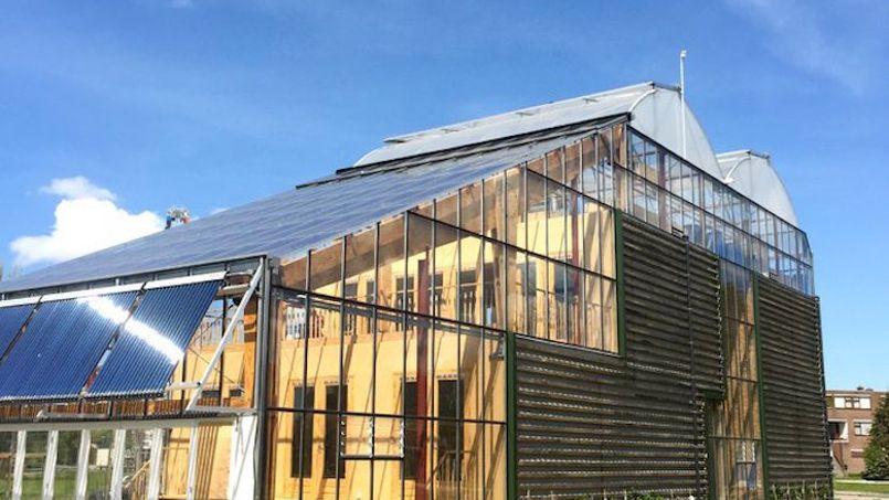 Maison-serre, toit potager... et l'envie de se mettre au vert