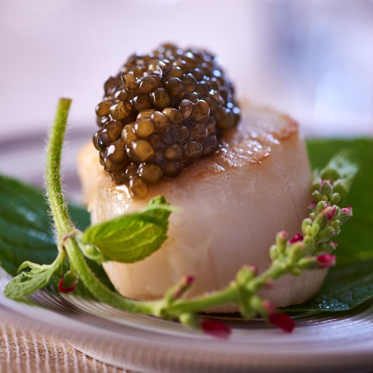 Recette saint jacques au caviar cuisine madame figaro for Saint jacques cuisine