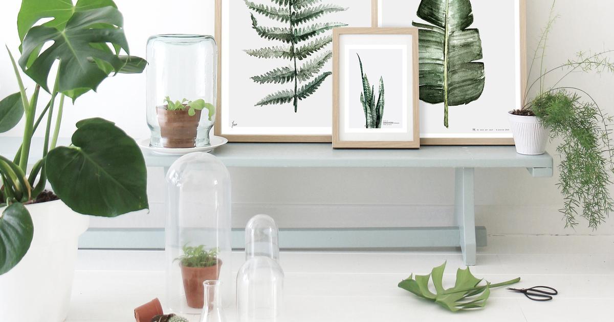 tendance d co le jardin rentre dans la maison madame figaro. Black Bedroom Furniture Sets. Home Design Ideas