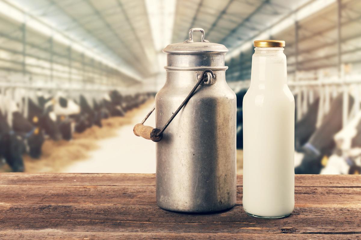 Comment remplacer le lait de vache dans son alimentation - Par quoi remplacer le gesso ...