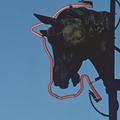 La viande de cheval ou le bon goût de l'interdit