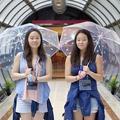 L'incroyable histoire de jumelles réunies grâce à Internet