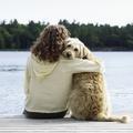 Les Français préfèrent leur chien à leur conjoint pour buller en été