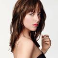 """Fifty Shades of Grey"" : la sensation Dakota Johnson"