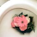 Le gouvernement japonais crée un trophée... des meilleures toilettes