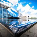 Dallas la nouvelle capitale arty