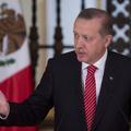 Turquie : une femme condamnée à de la prison ferme pour un geste obscène au président