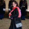 Ségolène Royal, l'ascension politique d'une pasionaria
