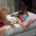 Les 7 choses à faire avant de se coucher pour mieux dormir
