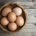 L'œuf vient nourrir nos produits de beauté