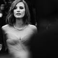 Vingt-neuf clichés exclusifs du Festival de Cannes 2016