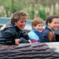 Lady Diana : les plus beaux hommages de William et Harry