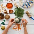 Un atelier DIY consacré aux décorations de Noël végétales lors du Salon Saveurs