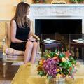 Melania Trump et la mode : n'est pas Michelle Obama qui veut