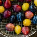 Onze fruits et légumes exceptionnels auxquels il faudra goûter cet été