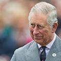 Le prince Charles lit Harry Potter à ses petits-enfants