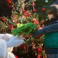 Des enfants mettent le père Noël au régime