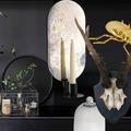 Vingt objets déco pour un cabinet de curiosités à petit prix