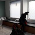 """Au côté des """"dames"""" du seul centre d'accueil de jour de Paris réservé aux femmes"""