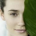 Vegan, végétal, bio… Quels sont les signes distinctifs de ces labels cosmétiques ?