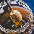 Miel, propolis, gelée royale... Leurs vertus insoupçonnées pendant l'hiver