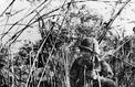 Il y a 60 ans Diên Biên Phu... combien s'en souviennent ?