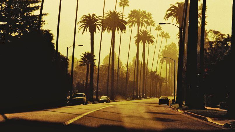 Sunset boulevard hollywood glamour et septi me art for Foster hollywood jardines
