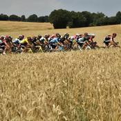 FFC : Les défis d'une petite fédération dans l'ombre du Tour de France