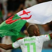 Brahimi, Algérie