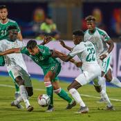 Les joueurs de l'Algérie et du Sénégal