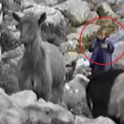 Les étonnantes images du jeune Luka Modric, berger dans les montagnes croates
