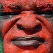 Supporter Cameroun