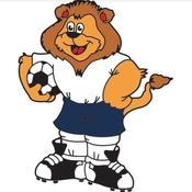 Euro 1996 : Goaliath