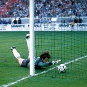 Euro 1984, France-Espagne, Arconada