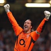 Gardien de but - David Seaman (1990-2003)