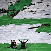 A peine éliminé, Saint-Etienne n'a qu'une idée en tête : retrouver l'Europe
