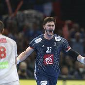 Ludovic Fabregas : «En seconde période, nous étions des lions»