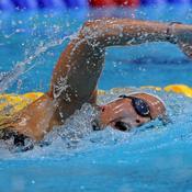 Deux nouvelles médailles pour les nageurs français