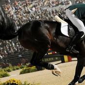 Les jeux mondiaux d'équitation, une manne financière pour la Normandie