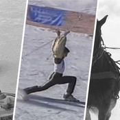 Ski attelé, pétanque des glaces, tir aux pigeons : quelques sports improbables vus aux JO