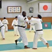 J-365 des JO de Tokyo: Teddy Riner, le Japon dans le sang