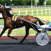Grand National du Trot : un final captivant