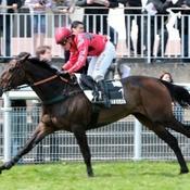 Questarabad vise le doublé dans la Grande Course de Haies d'Auteuil